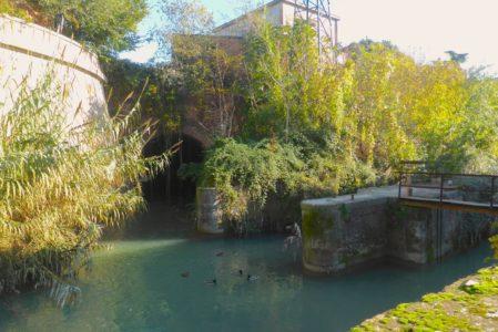 IL CANALE NAVILEDOMENICA 9 FEBBRAIO