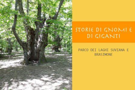 STORIE DI GNOMI E DI GIGANTI  DOMENICA 23 MAGGIO